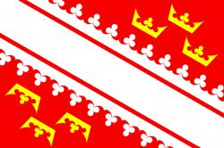 Drapeau de l'Alsace