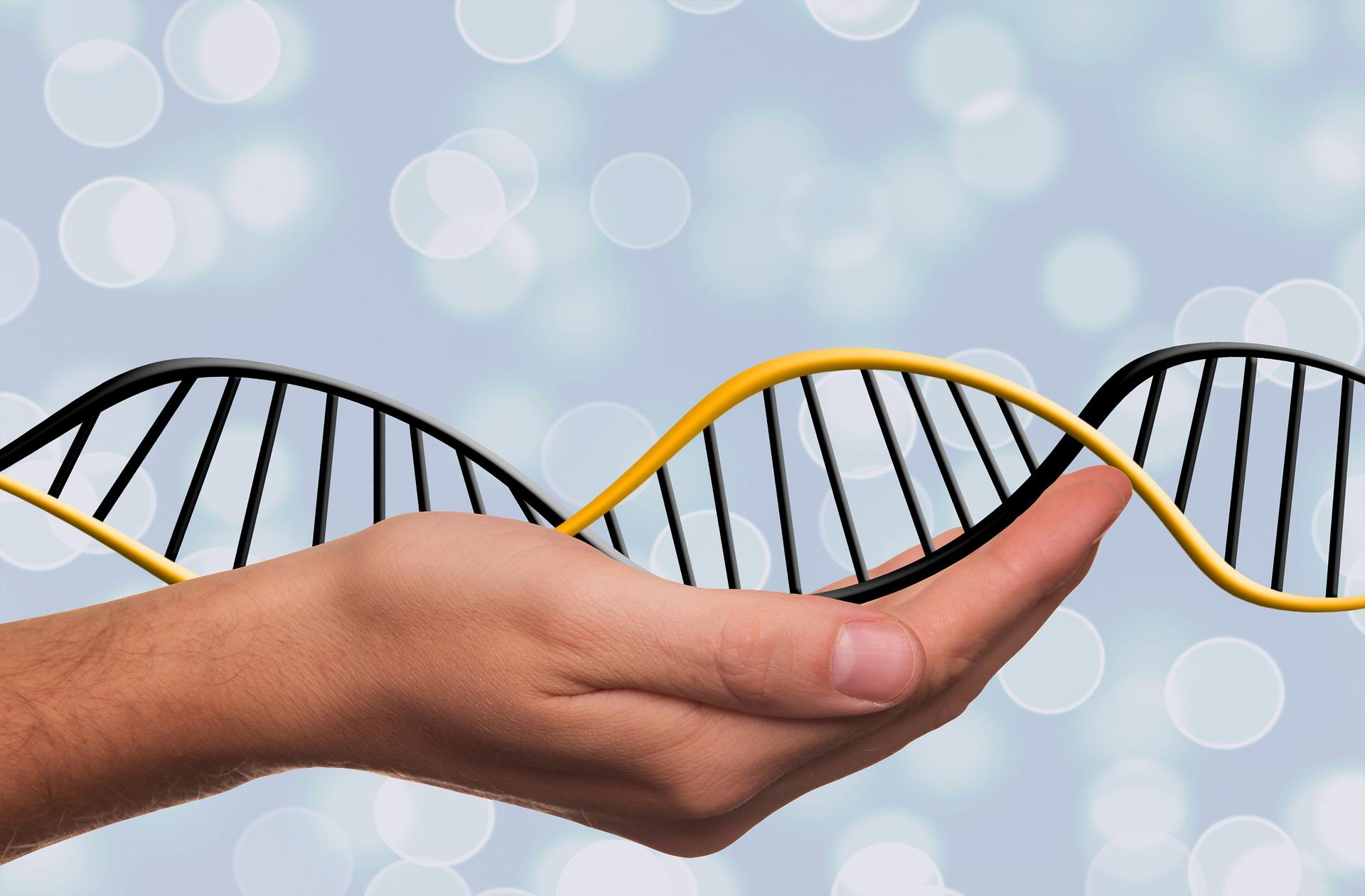 deoxyribonucleic-acid-1500076_1920