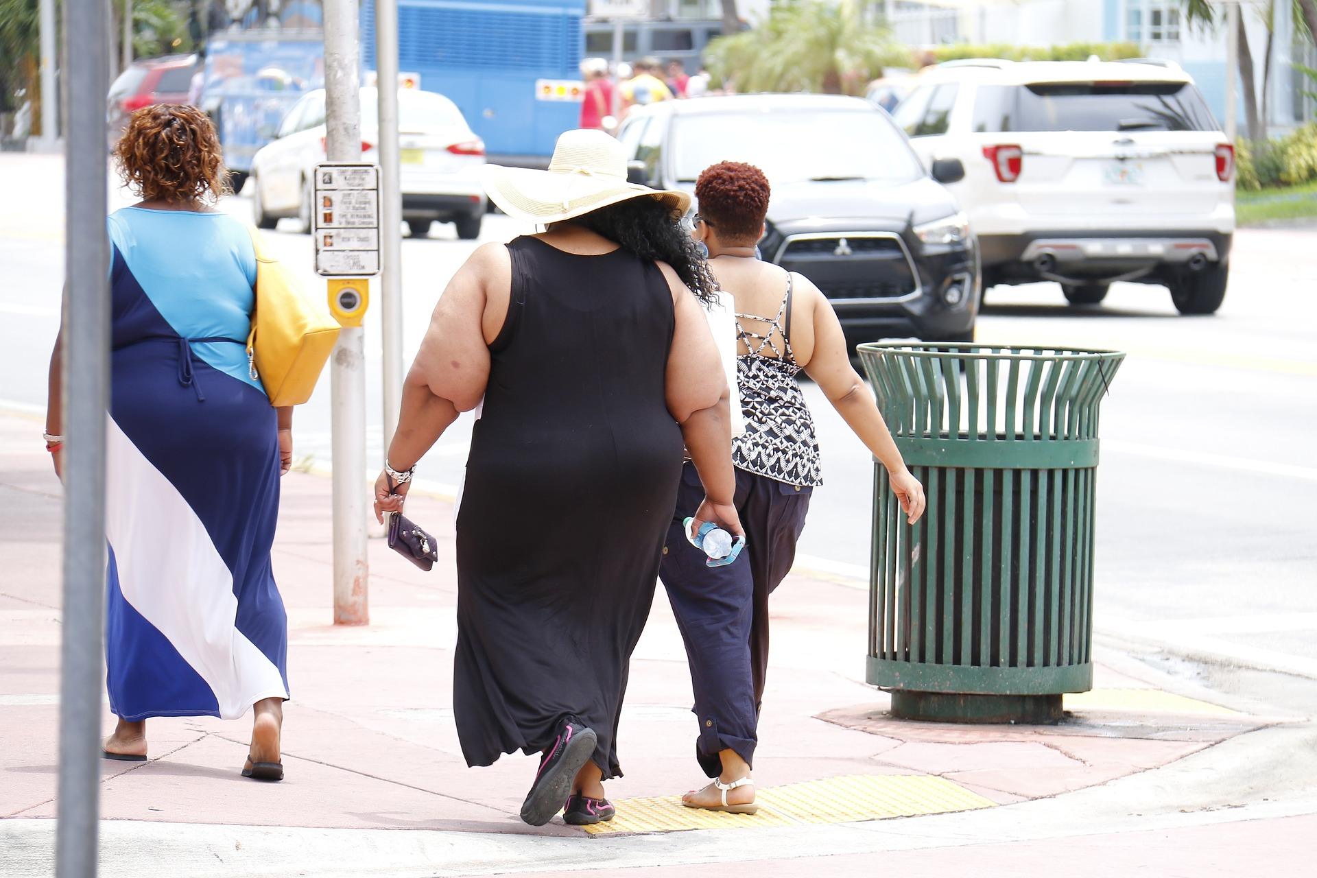 obesity-993126_1920