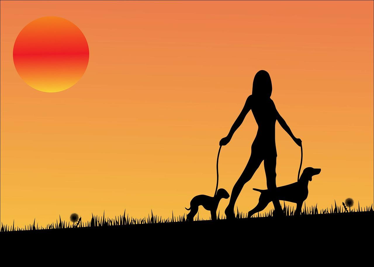 sunset-163479_1280